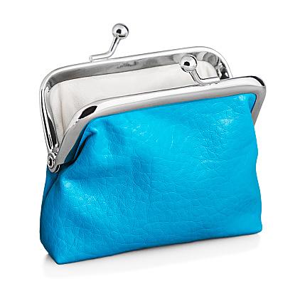 お財布の運気と人気ブランドを見てブルーのお財布にしてみては?のサムネイル画像