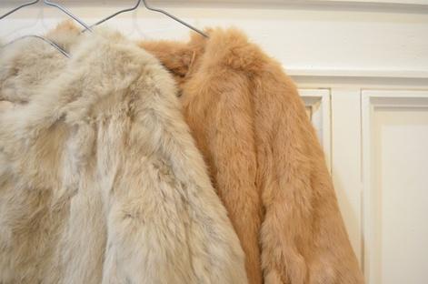 毛皮の種類は様々です! 動物を知るともっと愛着が湧いてきますのサムネイル画像