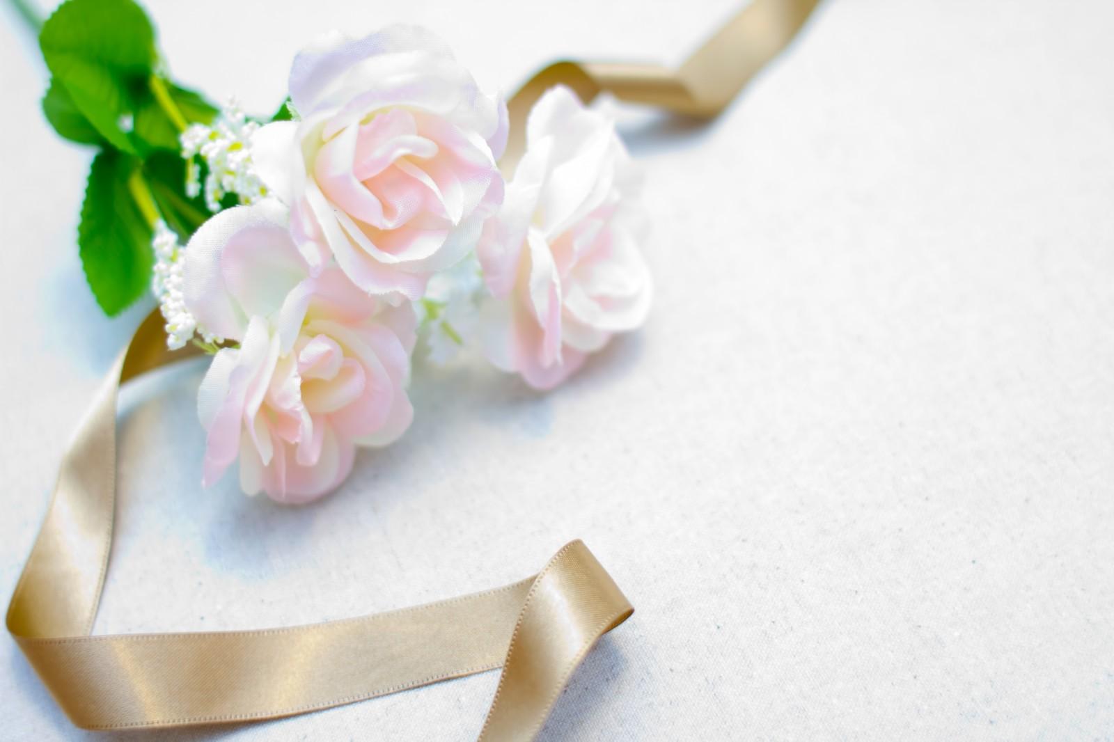 結婚式にお呼ばれされたら長袖ドレスもあり☆おすすめ長袖ドレス特集のサムネイル画像