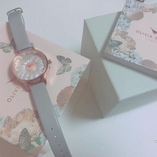 ダニエルウェリントンの次はコレ!シンプル可愛い【腕時計】カタログのサムネイル画像