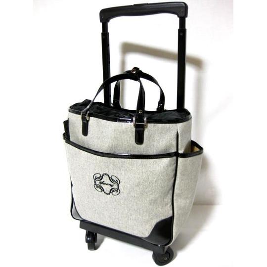 おしゃれなキャリーバッグを持って、楽しく旅行に出かけよう☆のサムネイル画像