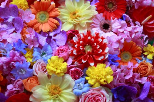 今!花柄がきてます!お気に入りの花柄ファッションを画像で見つけてのサムネイル画像