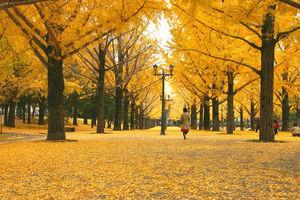 秋冬コーデの味方、ストールを使ってスタイルの幅を広げようのサムネイル画像