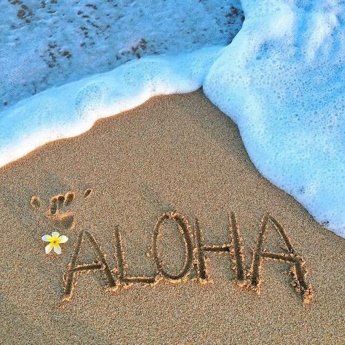 本場ハワイで今年流行のハワイアン生地を使用したファッションたちのサムネイル画像
