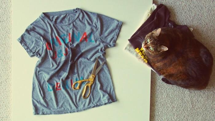【ペイント】アレンジTシャツでオシャレを楽しもう♪【カット】のサムネイル画像