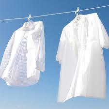【豆知識】しつこいシャツの黄ばみの落とし方をまとめました!!のサムネイル画像
