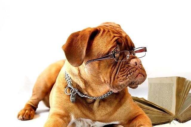 就職活動中の方注目!ビジネスに合うスーツとメガネの選び方のサムネイル画像
