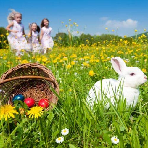 暖かい春!GUで買えるトレンドコーデでお出掛けしませんか?のサムネイル画像