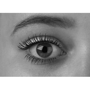 眉毛の形で女度急上昇!トレンド眉&王道美人眉で垢抜けよう♡のサムネイル画像